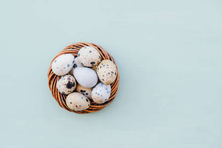 Happy Easter. Beautiful colorful quail eggs in bird nest on light blue background, close up, top view. Copy space, flat lay. Minimal Easter composition. Springtime.
