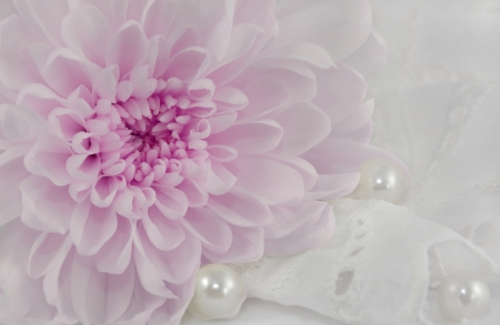 Romantic abstract background with lilac chrysanthemum, pearls and white lace suitable for wedding invitation card  photo