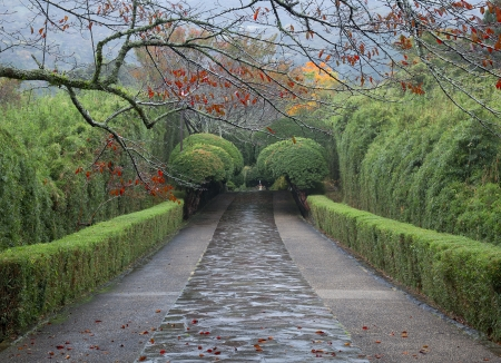 Rainy day at the Japanese garden of the former Imperial Vacation Palace photo