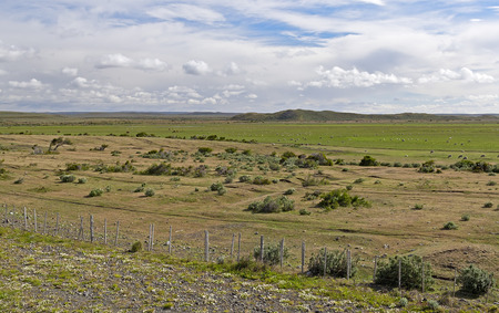 arenas: Prairie of Patagonia