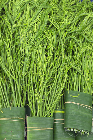 cha om: Thai cuisine, cha om leaves on a market stall Stock Photo