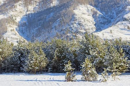 siberia: Winter landscape, Siberia