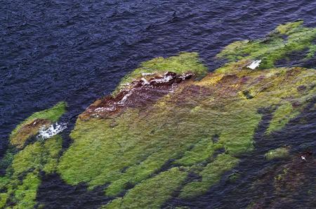 shoreline: Atlantic shoreline