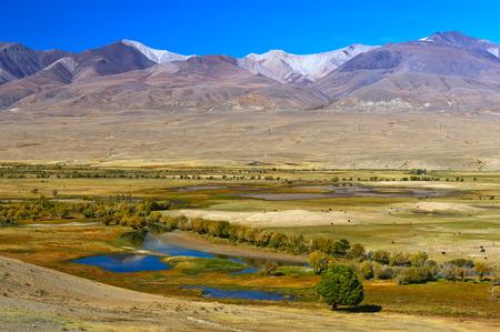 Chuya steppe e Altai Mountains Archivio Fotografico - 71231472