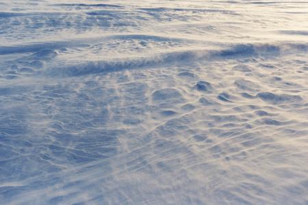 Blizzard invernale con forte vento soffiato e temperatura fredda a sera Archivio Fotografico - 71336480