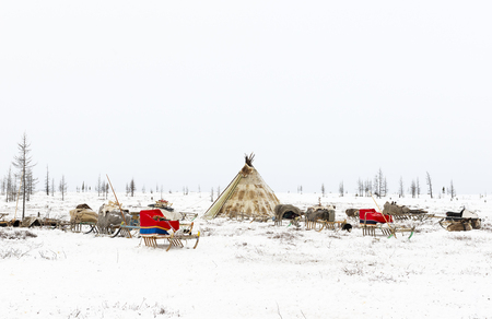 Campeggio di tribù nomade nella tundra polare in un giorno gelido, chum, slitta e altre cose Archivio Fotografico - 73930913