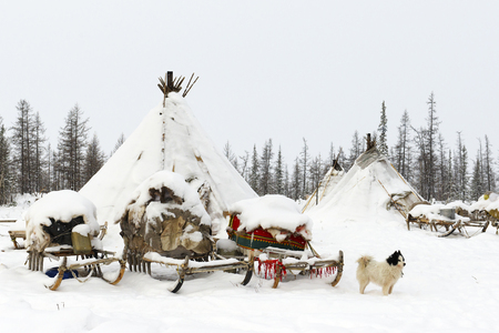 Campeggio di tribù nomade nella tundra polare in un giorno gelido, chum, slitta e altre cose Archivio Fotografico - 73930914