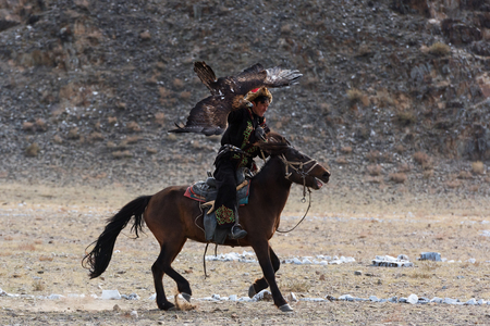 Bayan-Olgii, Mongolia - September 30, 2017: Unknown huntsman with Golden Eagle shows his experience in falconry.