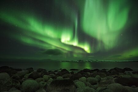 Barents Sea. Rocky shore nearby of Murmansk. Zdjęcie Seryjne