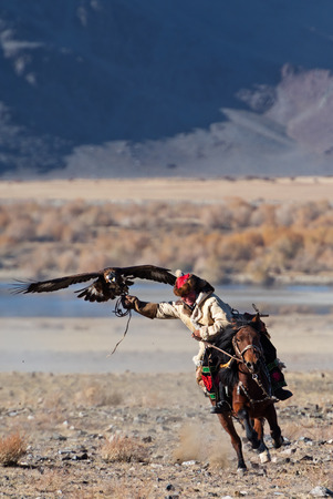 Bayan-Olgii, Mongolia - October 06, 2018: Unknown huntsman with golden eagle shows his experience in falconry.