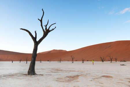 Silhouette of traveler in the Deadvlei pan, Namibia desert