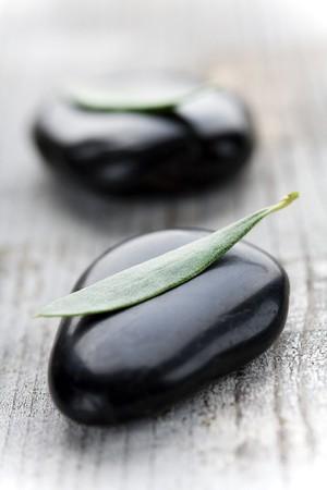 serenety: black stones with a leaf, focus on leaf