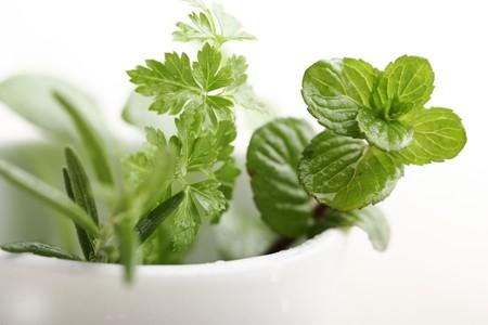 fresh herbs: fresh mint,parsley and rosemary Stock Photo