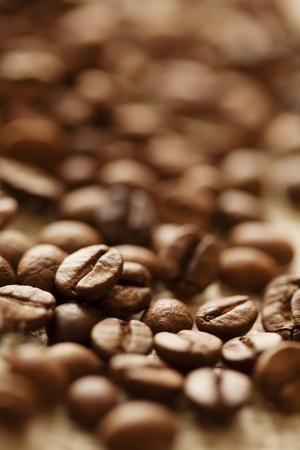 closeup of coffee beans, shallow dof Standard-Bild