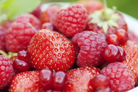 closeup of fresh ripe berries photo