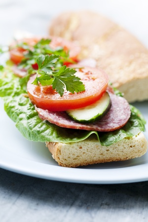 sandwich with lettuce, salami,tomato, cucumber and parsley photo