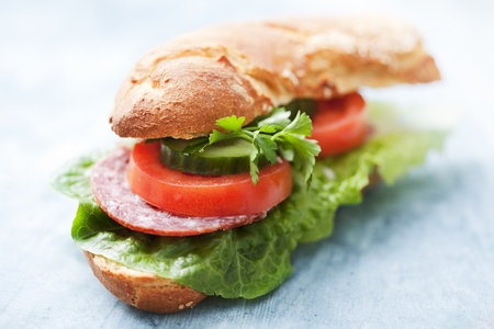 close up food: sandwich with lettuce, salami,tomato, cucumber and parsley Stock Photo