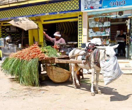 El vendedor de verduras en el mercado de la calle egipcio también conocido como Zoco- Foto de archivo - 18113594