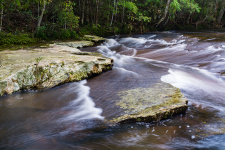 loei: Stream in the jungle
