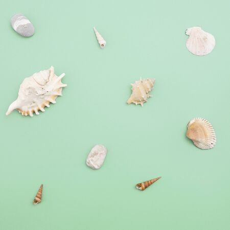 Flat lay. Top view. Frame of shells of various kinds on a green blue background. Seashells and starfish on a pastel background. Vacation concept