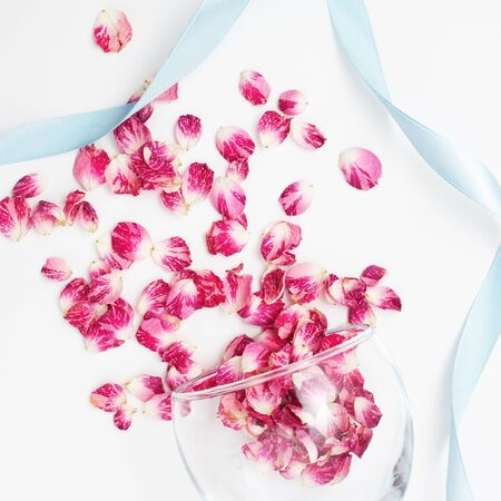 Petal flower on white background with blue ribbon.Flat lay.Valentines,love and wedding concept ideas Standard-Bild