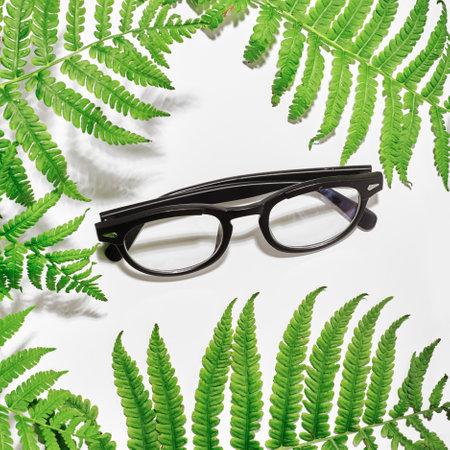 Flat lay. Top view. Stylish glasses among fern leaves