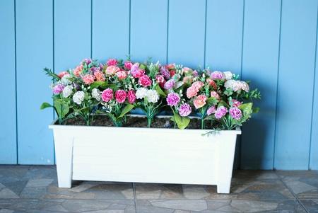 colour: Flowers Stock Photo