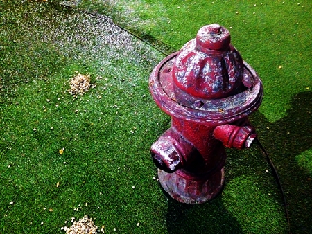 The red of the old classic hydrant on grass. Stock Photo