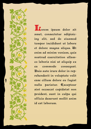 medieval: Template book page in a medieval style. Place for text. Floral frame of interwoven stems, foliage and flowers. Vector edging, design element and page decoration. Vector retro background
