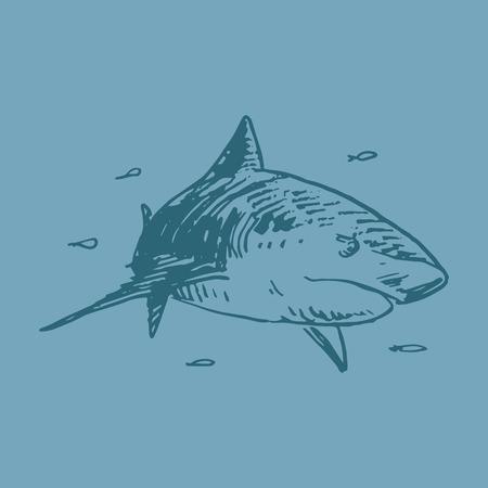 animalistic: Vector shark. Quick sketch