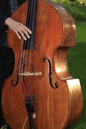 Cello Stock Photo - 4959436