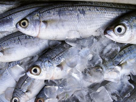 Fresh fish in ice for sale Stock Photo