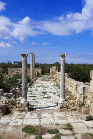 Old antique Salamis - Northern Cyprus