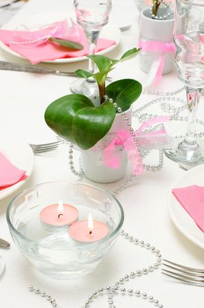 a marriage meeting: Holiday tableware in white and pink colors Stock Photo