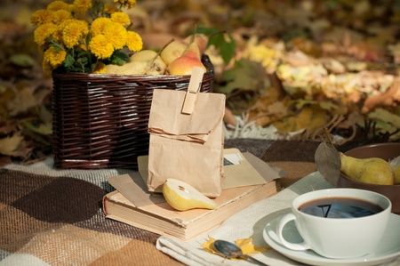 Fall picnic, brown bag and autumn flowers in a basket photo