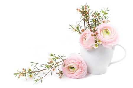 Bouquet of pink ranunculus in a ceramic jug on a white background photo