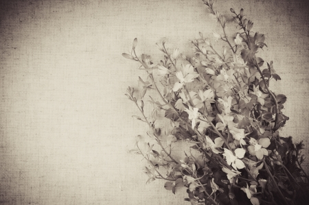 Art vintage background with wild flowers on linen fabric photo