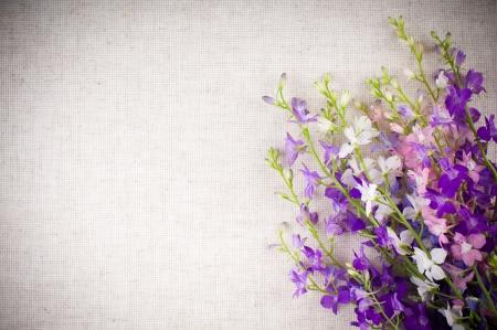 porpora: Sfondo arte con brillanti fiori selvatici viola su tessuto di lino Archivio Fotografico