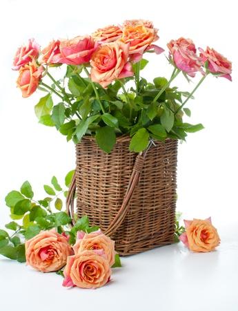 rosas naranjas: Arreglo con rosas en una cesta de mimbre con los colores naranja sobre un fondo blanco