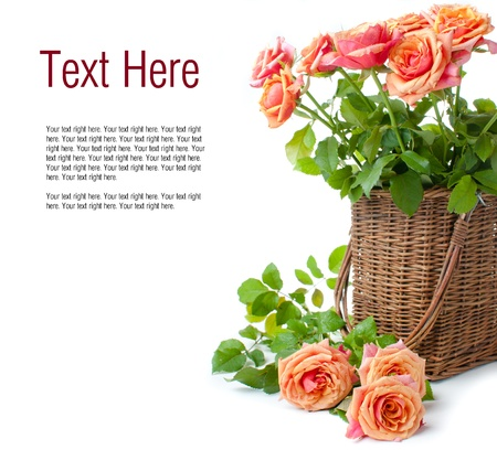 Arrangement with roses in a wicker basket in the orange colors on a white background Stock Photo