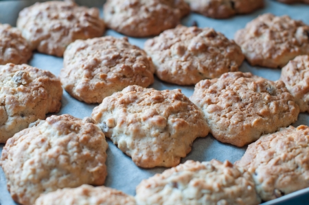 oatmeal cookie: Freshly baked cookies on a baking tray, close-up Stock Photo
