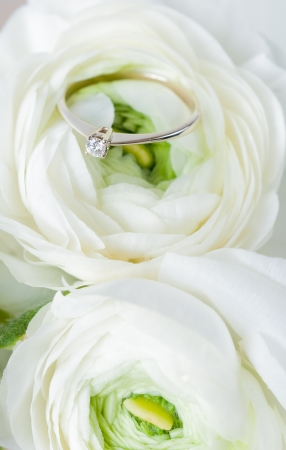 Golden engagement ring with diamond in a white flower close-up Stock Photo - 16512652