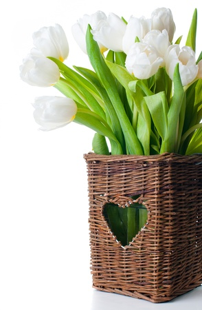Spring bouquet of fresh white tulips in a wicker basket, isolated, close-up photo