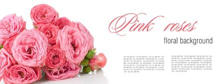 farme: Fiore sfondo con rose rosa, modello di progettazione pronti, isolato Archivio Fotografico