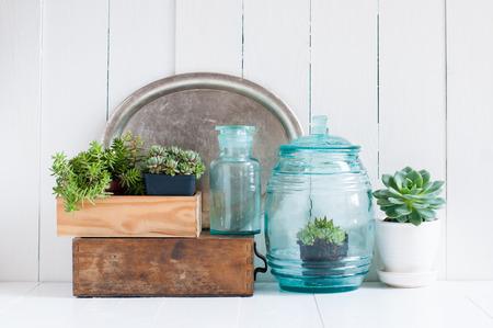 Vintage interieur: kamerplanten, groene vetplanten, oude houten kisten en vintage blauwe glazen flessen op witte houten plank, gezellig interieur.