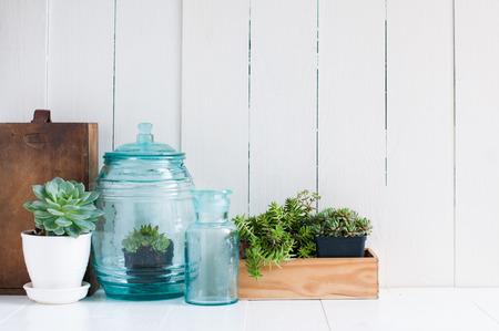 빈티지 홈 인테리어 : 실내 화분 용 화초, 녹색 다육 식물, 오래 된 나무 상자와 흰색 나무 보드에 빈티지 블루 유리 병, 아늑한 집 인테리어입니다.