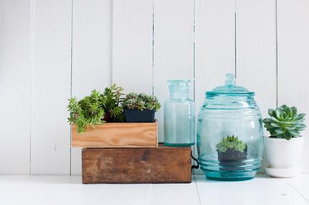 Vintage home decor: kamerplanten, groene vetplanten, oude houten kisten en vintage blauwe glazen flessen op witte houten plank, gezellig interieur.