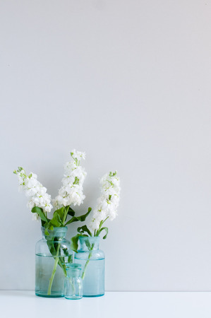 Vintage home decor background, white matthiola flowers in different blue glass bottles vases on a shelf by the wall