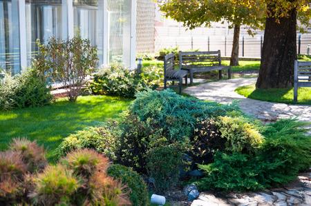 enebro: Hermoso patio de verano con el banco, jardín alpino, las plantas verdes y árboles, el diseño del paisaje europeo