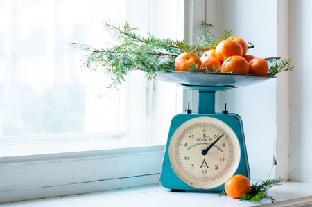 kitchen scale: Vintage kitchen scales with tangerines and spruce branches on a white windowsill in daylight. Stock Photo